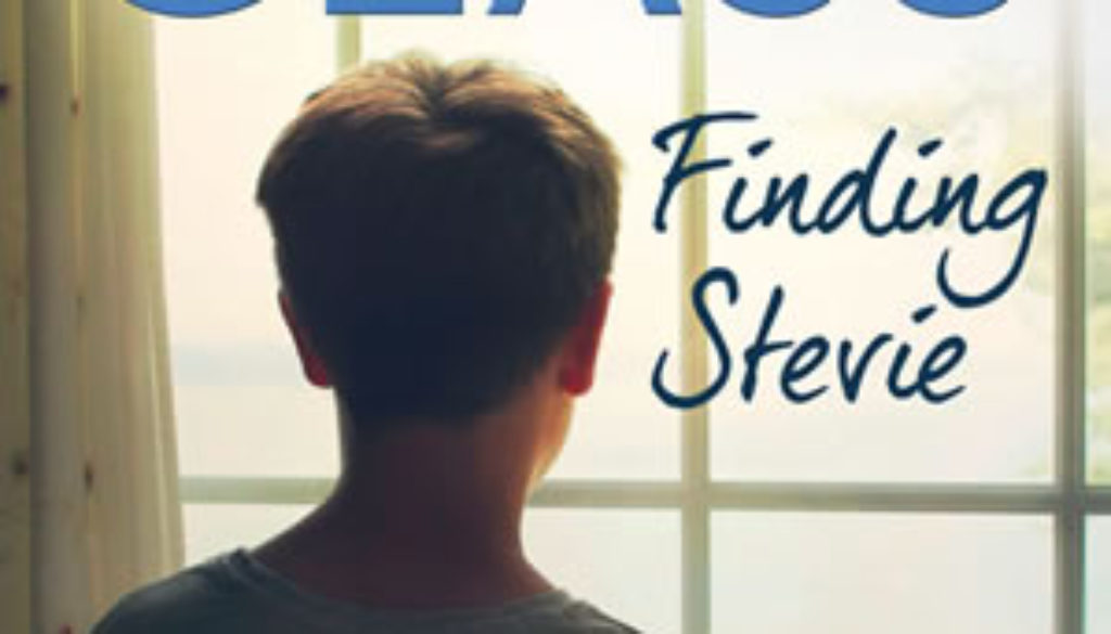 finding-stevie-cathy-glass